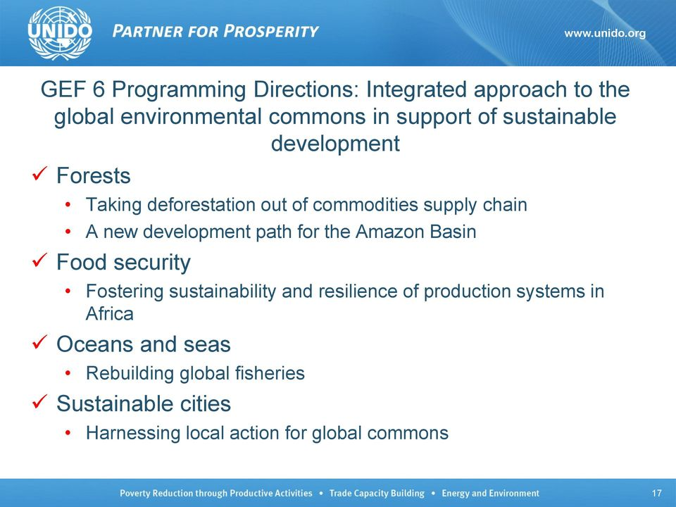path for the Amazon Basin Food security Fostering sustainability and resilience of production systems in