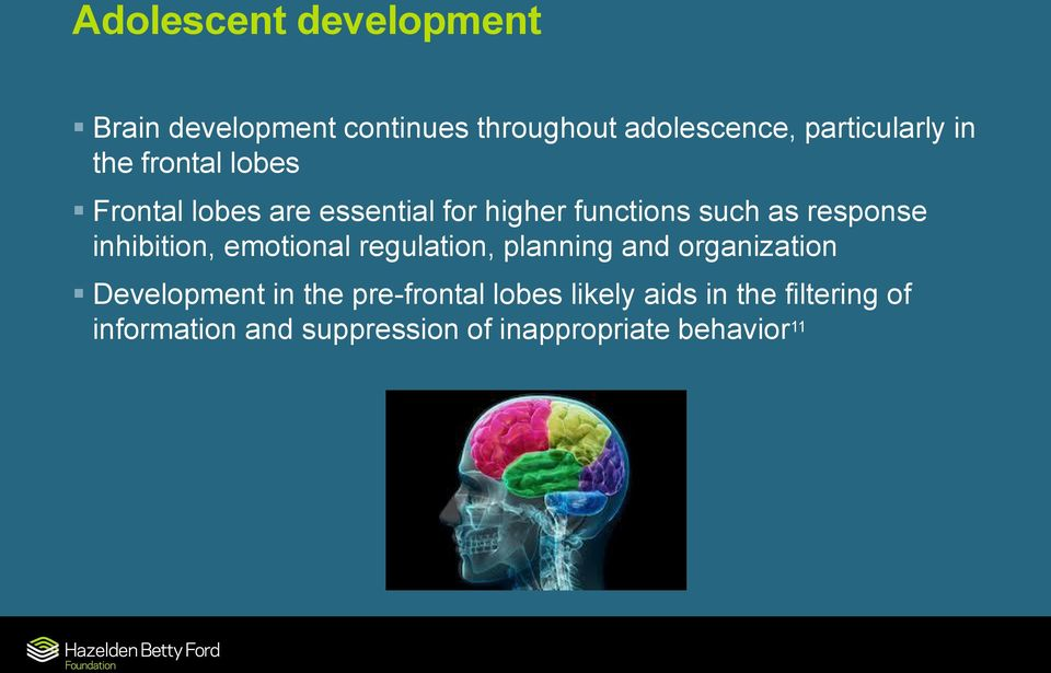 inhibition, emotional regulation, planning and organization Development in the