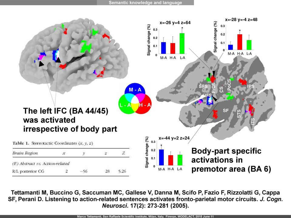 3 x=-26 y=4 z=64 * PrCS Signal change (%) Semantic knowledge and language M-A H-A L-A Body-part specific activations in premotor area (BA 6) Tettamanti