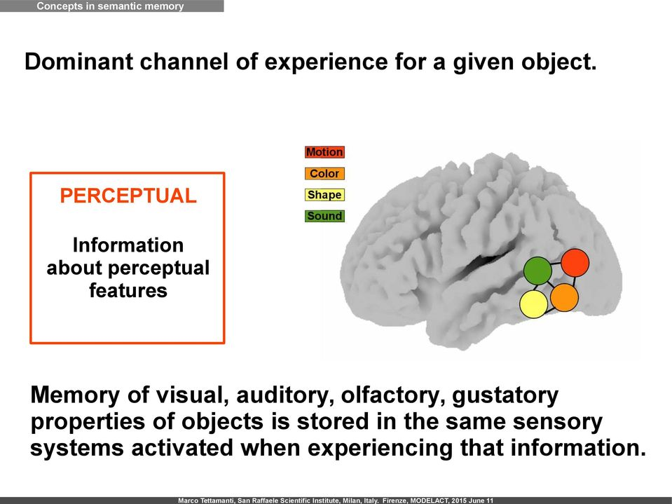 PERCEPTUAL Information about perceptual features Memory of visual,