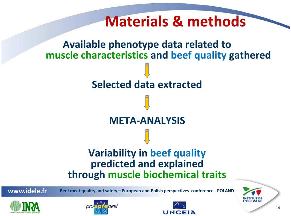 data extracted META-ANALYSIS Variability in beef quality