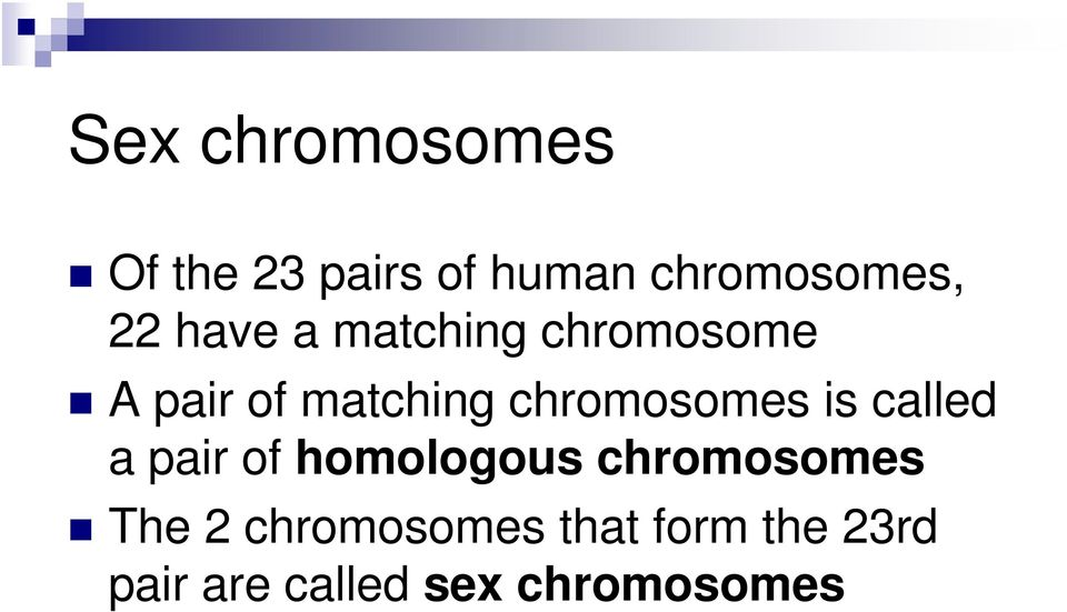 chromosomes is called a pair of homologous chromosomes