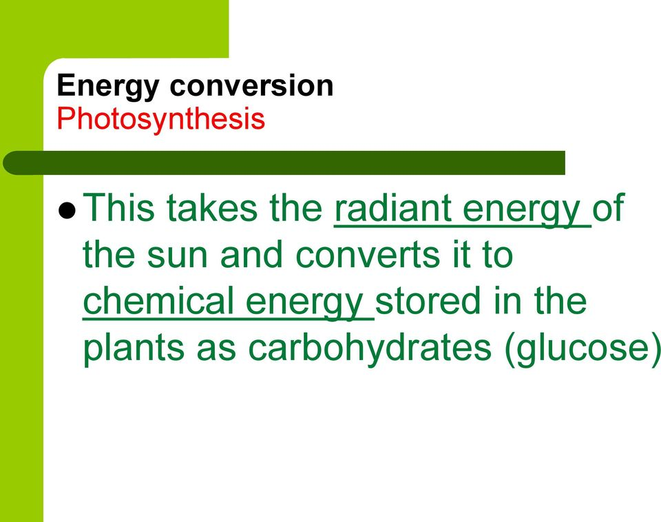 and converts it to chemical energy