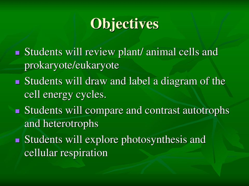 cell energy cycles.