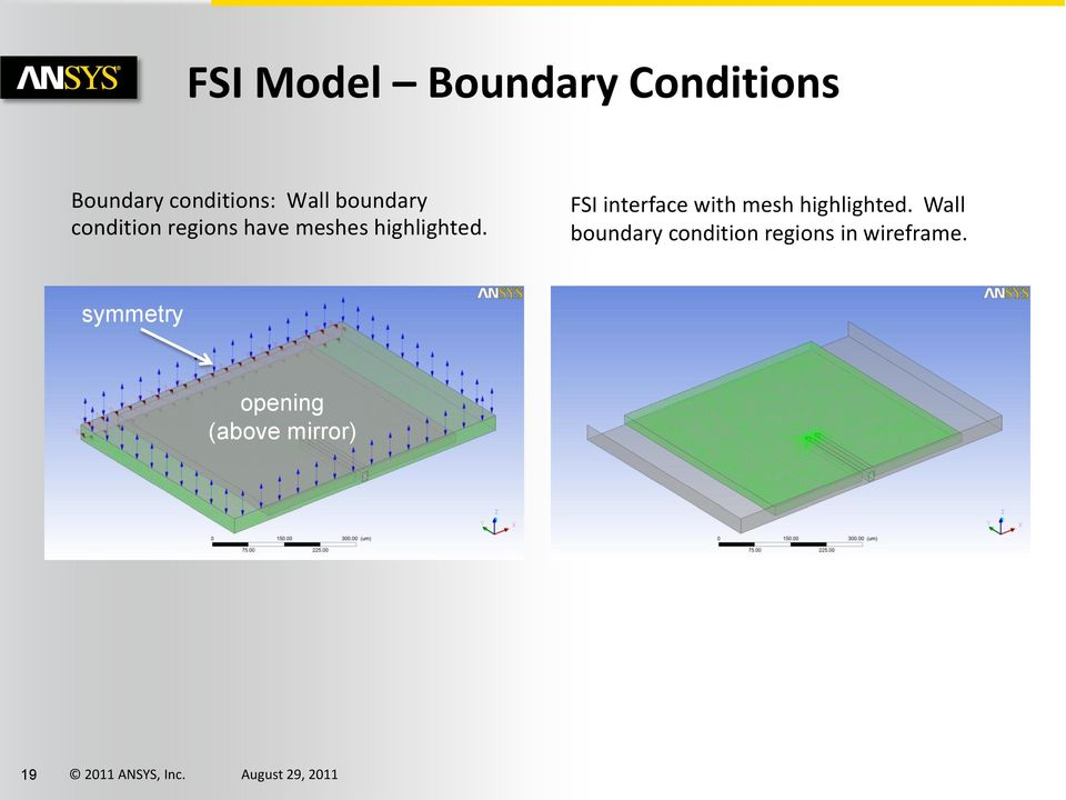 FSI interface with mesh highlighted.