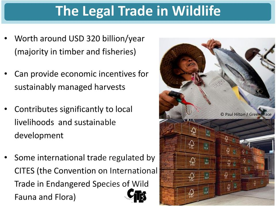 local livelihoods sustainable development Paul Hilton / Greenpeace Some international trade