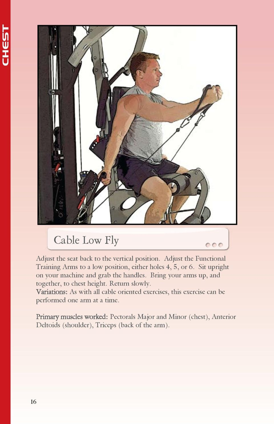 Sit upright on your machine and grab the handles. Bring your arms up, and together, to chest height. Return slowly.