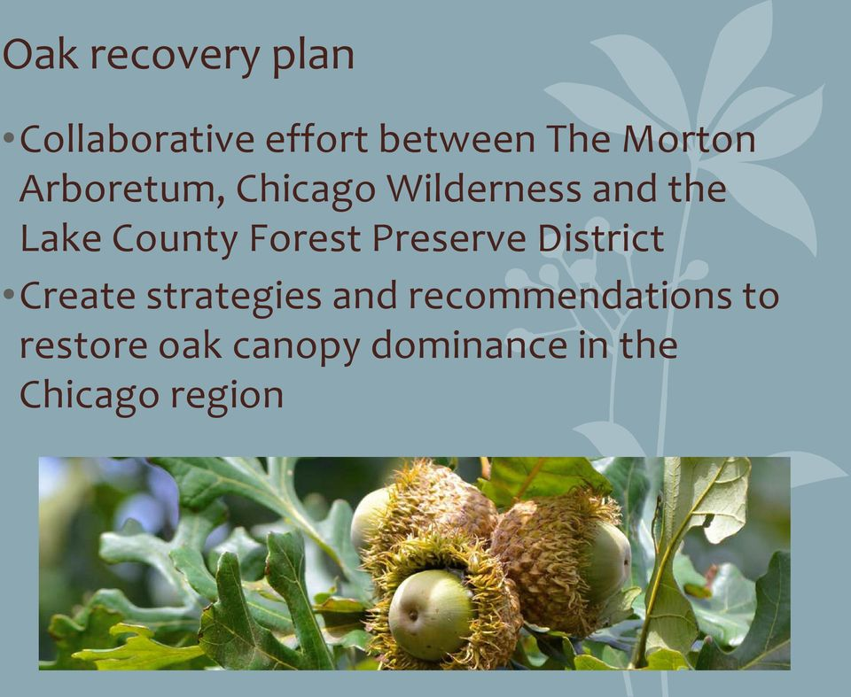County Forest Preserve District Create strategies and