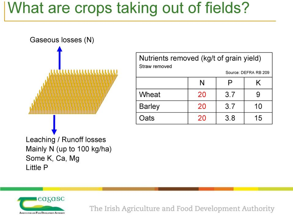 Straw removed Source: DEFRA RB 209 Leaching / Runoff losses