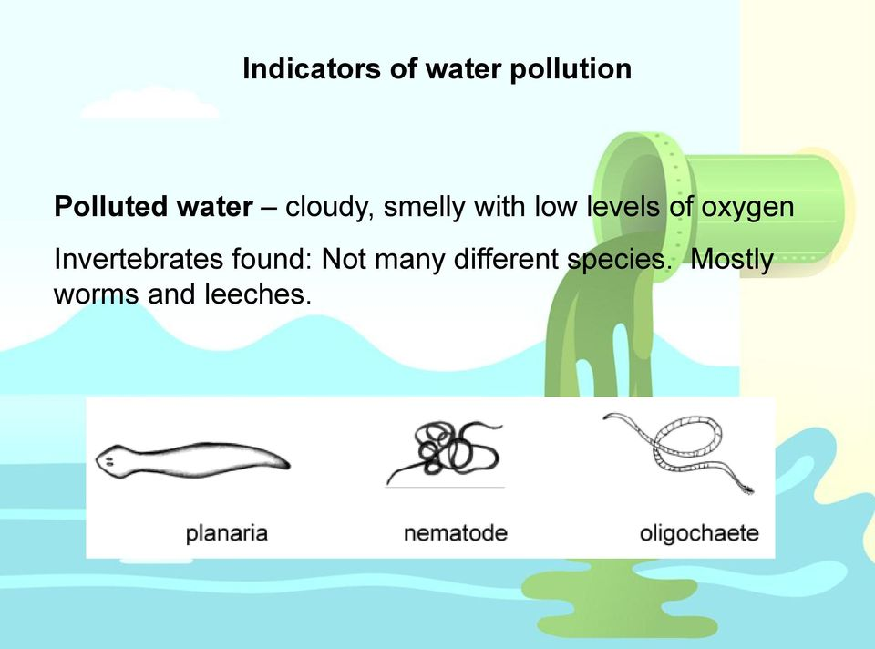 oxygen Invertebrates found: Not many
