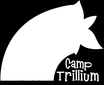 Promotional Materials that show what fundraising dollars do for Camp Trillium including newsletters, logos, videos, magnets and more.