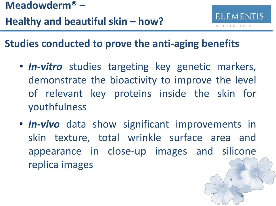 demonstrate the bioactivity to improve the level of relevant key proteins inside the skin for