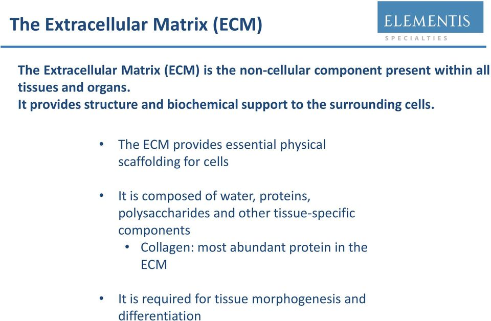 The ECM provides essential physical scaffolding for cells It is composed of water, proteins, polysaccharides and