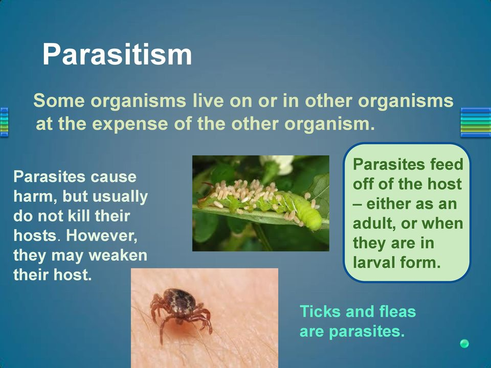 Parasites cause harm, but usually do not kill their hosts.