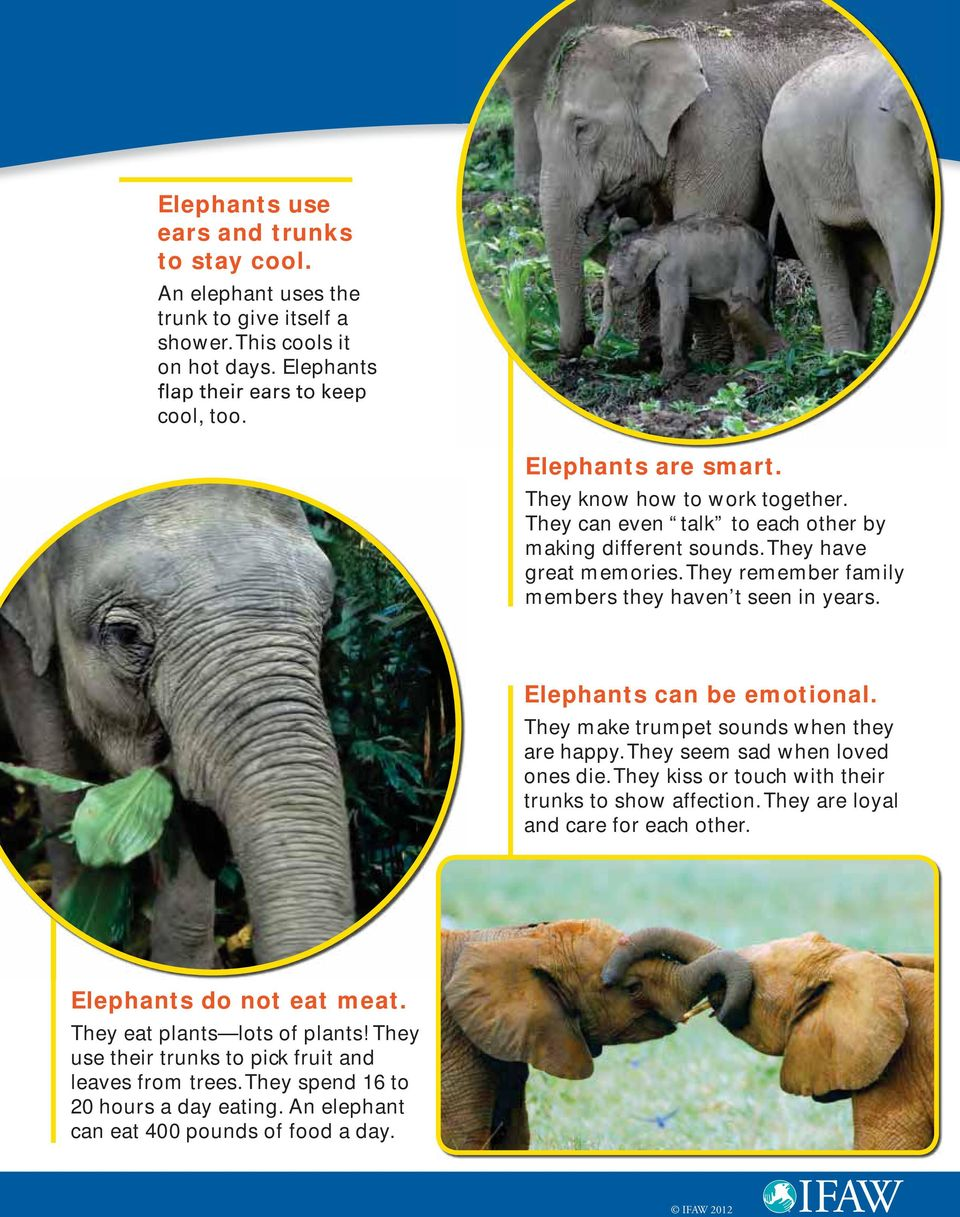 Elephants can be emotional. They make trumpet sounds when they are happy. They seem sad when loved ones die. They kiss or touch with their trunks to show affection.