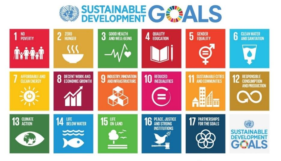 Q1. What are the Sustainable Development Goals? A1.