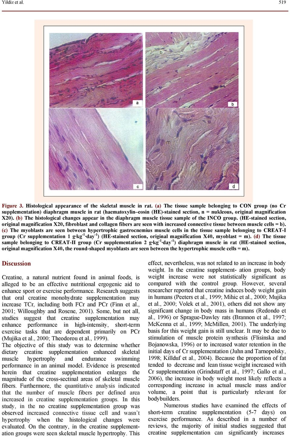(b) The histological changes appear in the diaphragm muscle tissue sample of the INCO group.