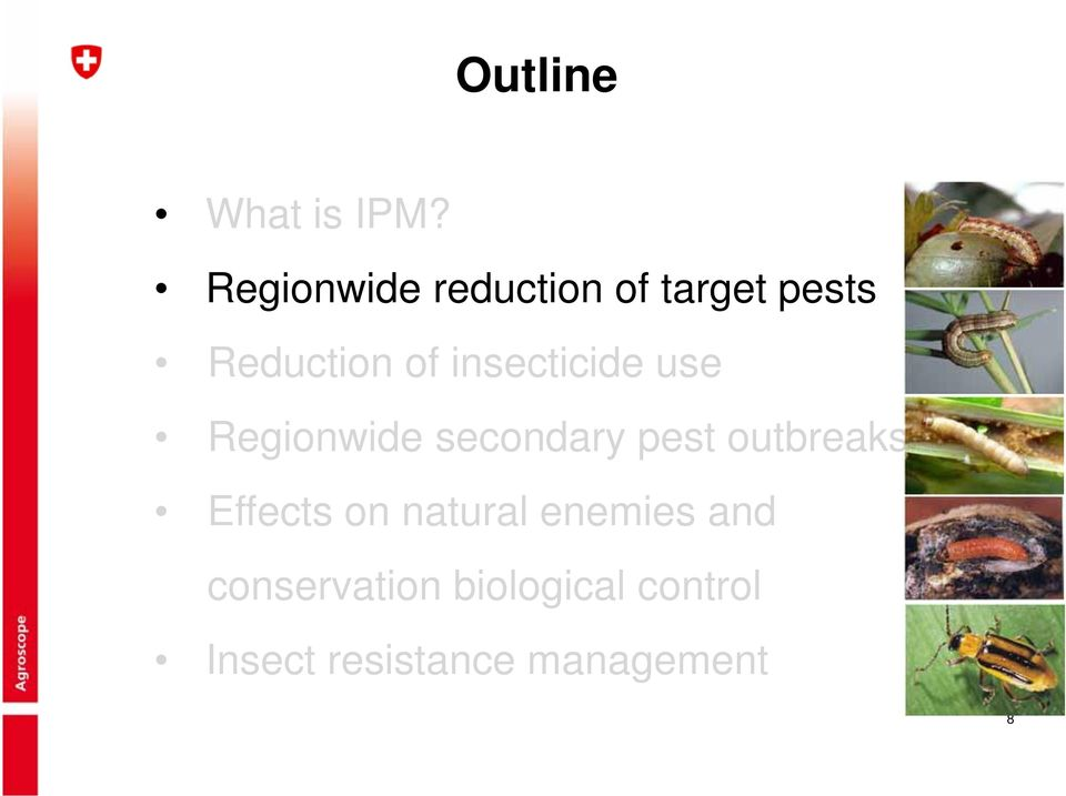 insecticide use Regionwide secondary pest outbreaks