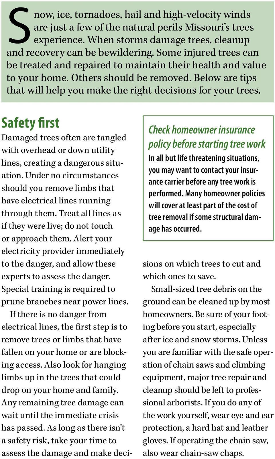 Safety first Damaged trees often are tangled with overhead or down utility lines, creating a dangerous situation.