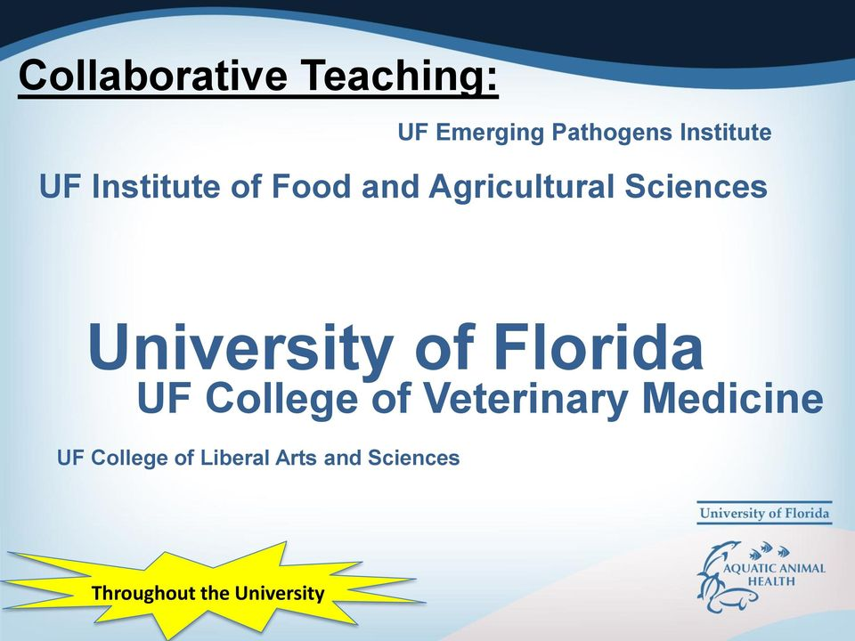 University of Florida UF College of Veterinary Medicine