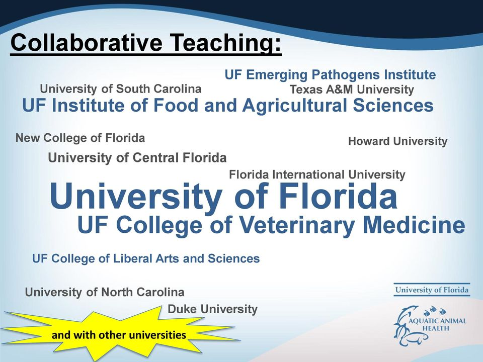 University Florida International University University of Florida UF College of Veterinary Medicine UF