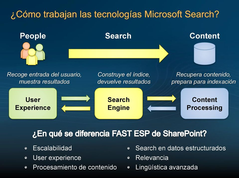 Experience Search Engine Content Processing Escalabilidad User experience