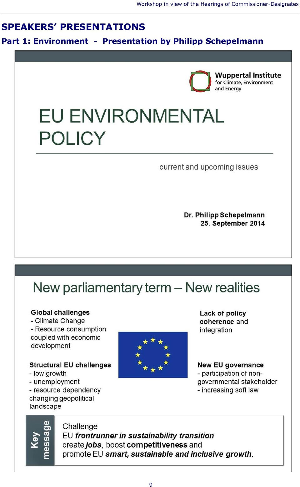 Schepelmann Part 1: Environment State of play of ongoing EU