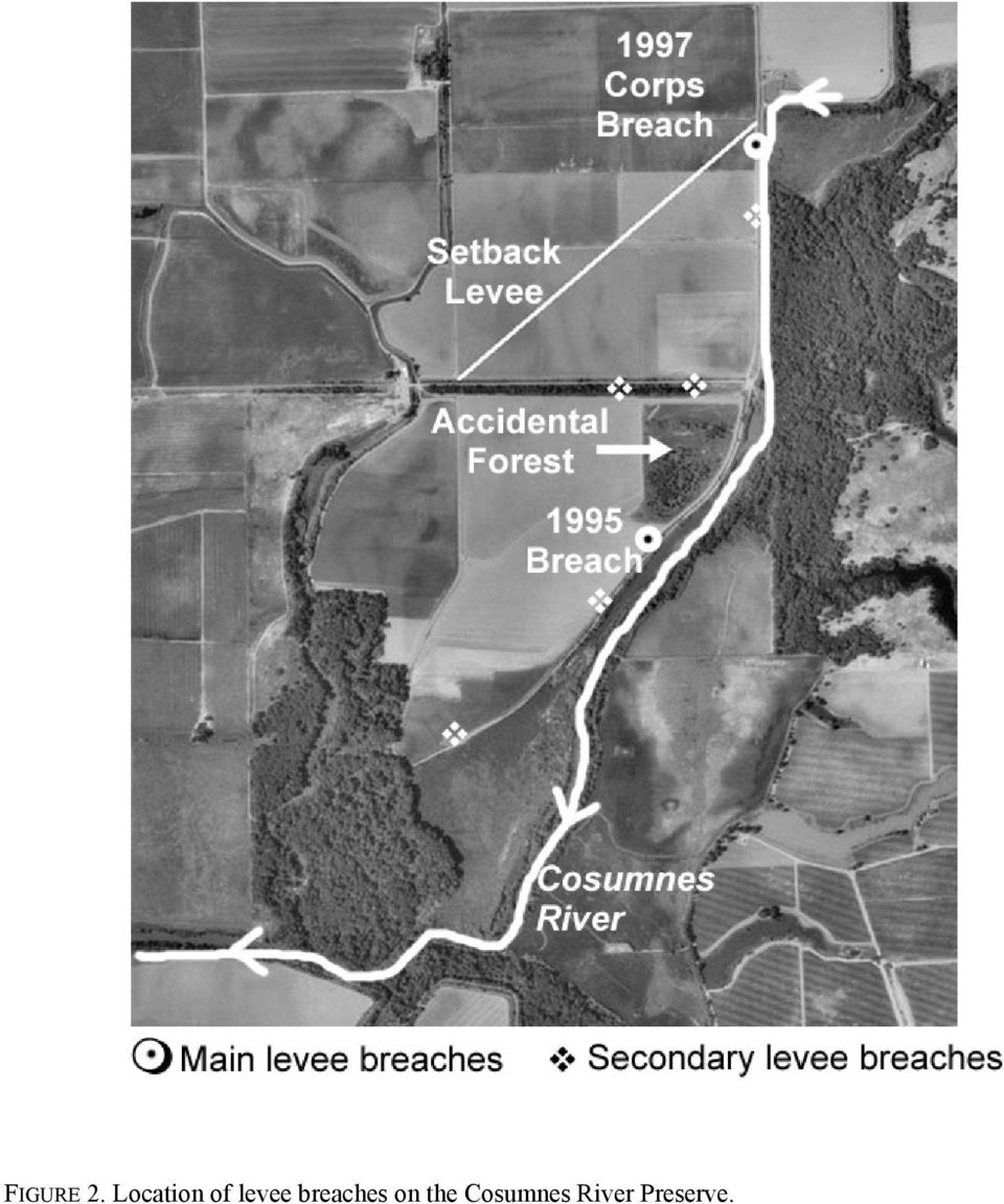 levee breaches