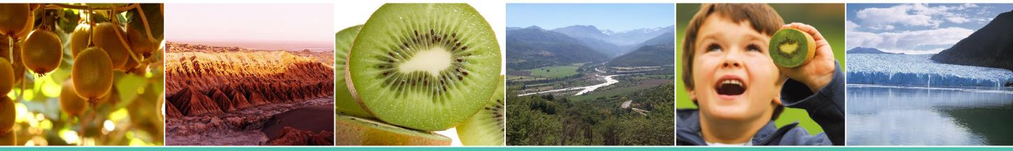 KIWIFRUIT, NEW FRUIT IN WESTERN CULTURE. Mr.