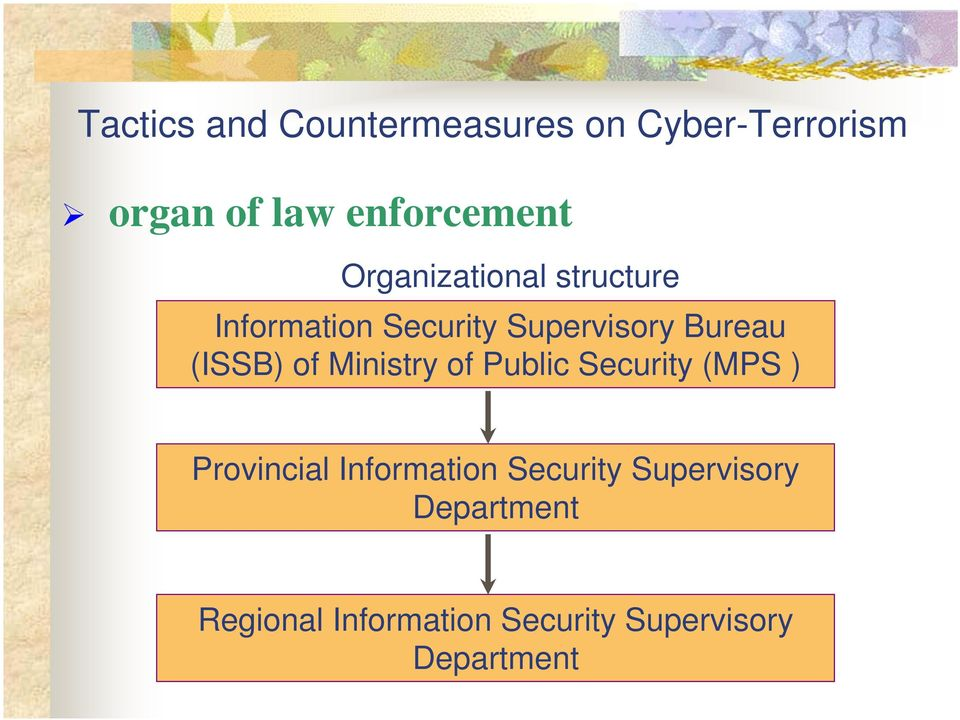 of Ministry of Public Security (MPS ) Provincial Information Security