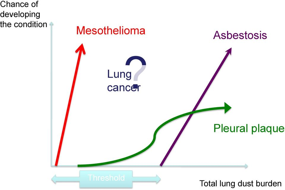 Lung cancer Asbestosis