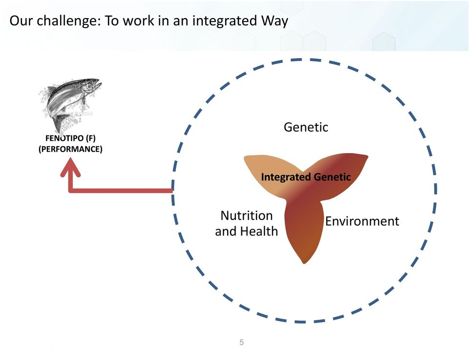 (PERFORMANCE) Genetic Integrated