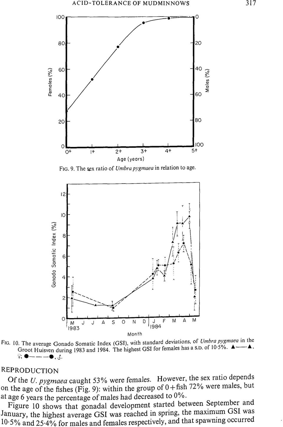 pygm aea cau g h t 53% were females. H w e «r. * e sex r P on the age o f the fishes (Fig. 9): w ithin the group of 0 + fish 7 2 /.