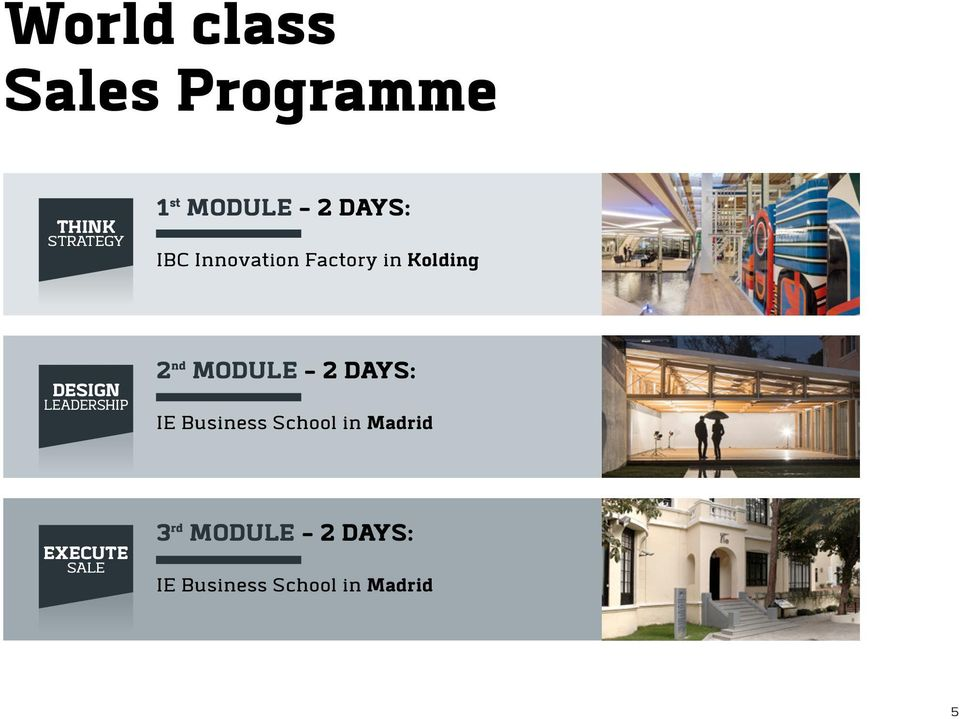 2 nd MODULE - 2 DAYS: IE Business School in Madrid EXECUTE