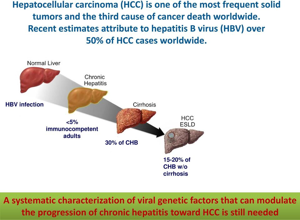 HBV-related deaths HBV infection <5% immunocompetent adults 30% of CHB CDC Division of Viral Hepatitis.