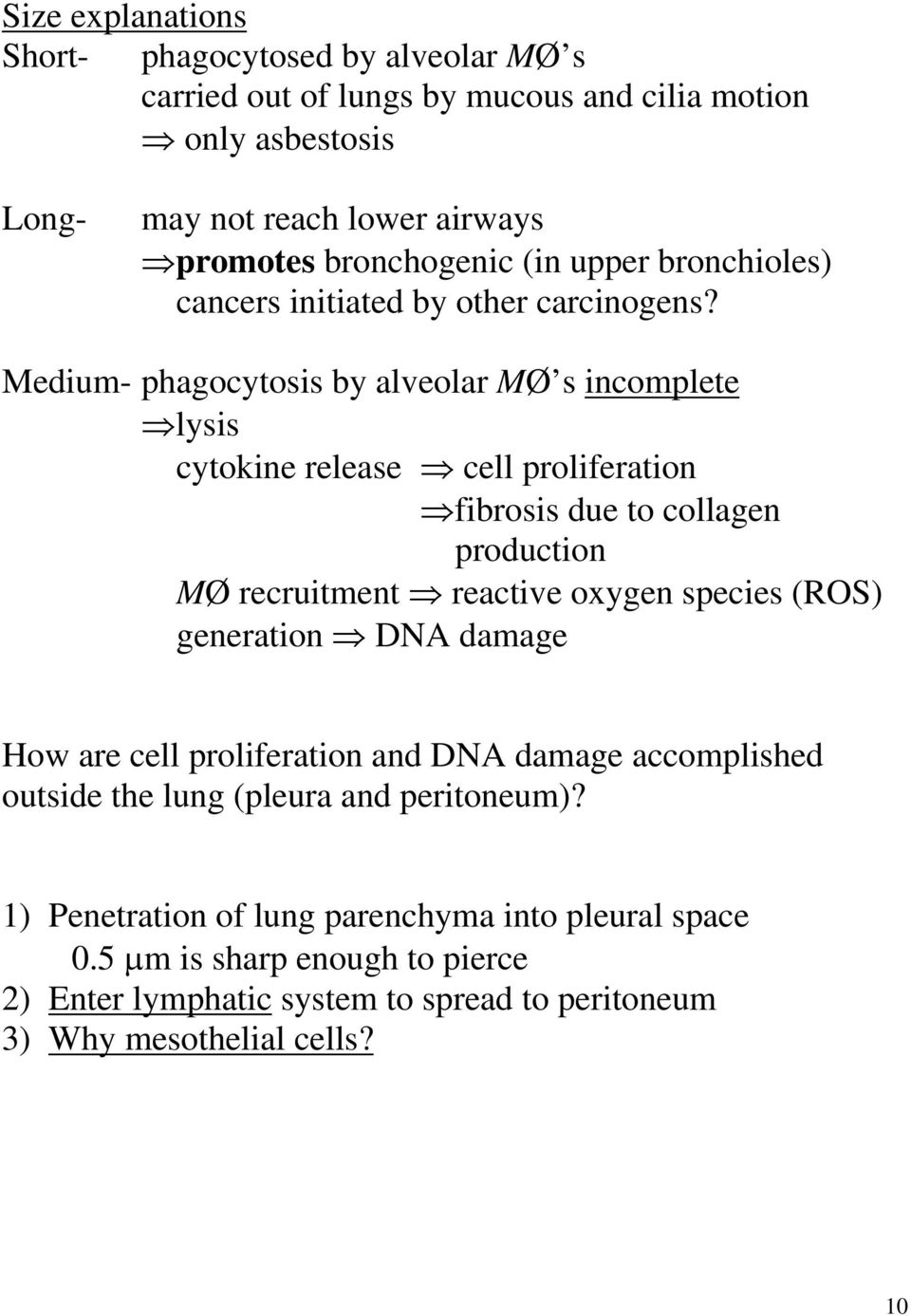 Medium- phagocytosis by alveolar MØ s incomplete lysis cytokine release cell proliferation fibrosis due to collagen production MØ recruitment reactive oxygen species (ROS)