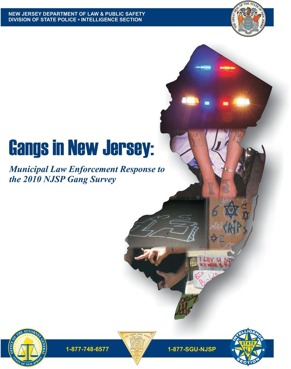 in New Jersey: Municipal Law Enforcement Response