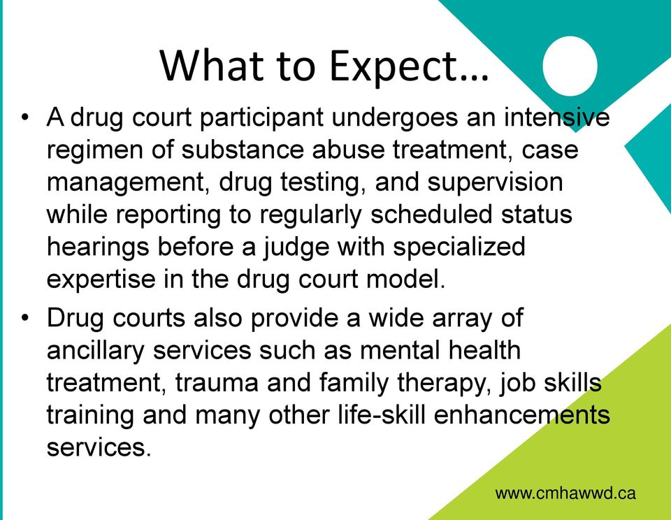 with specialized expertise in the drug court model.