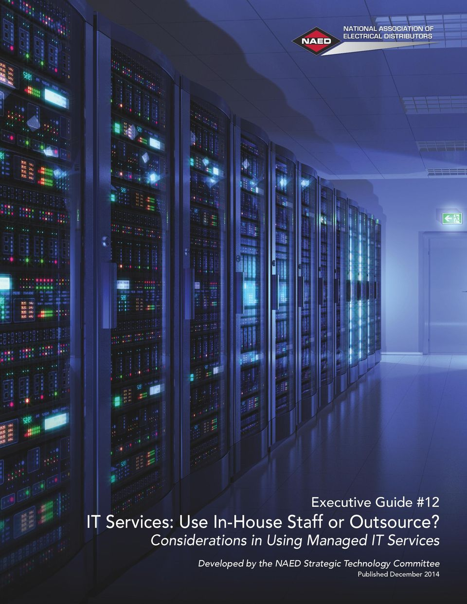 Considerations in Using Managed IT Services Developed by