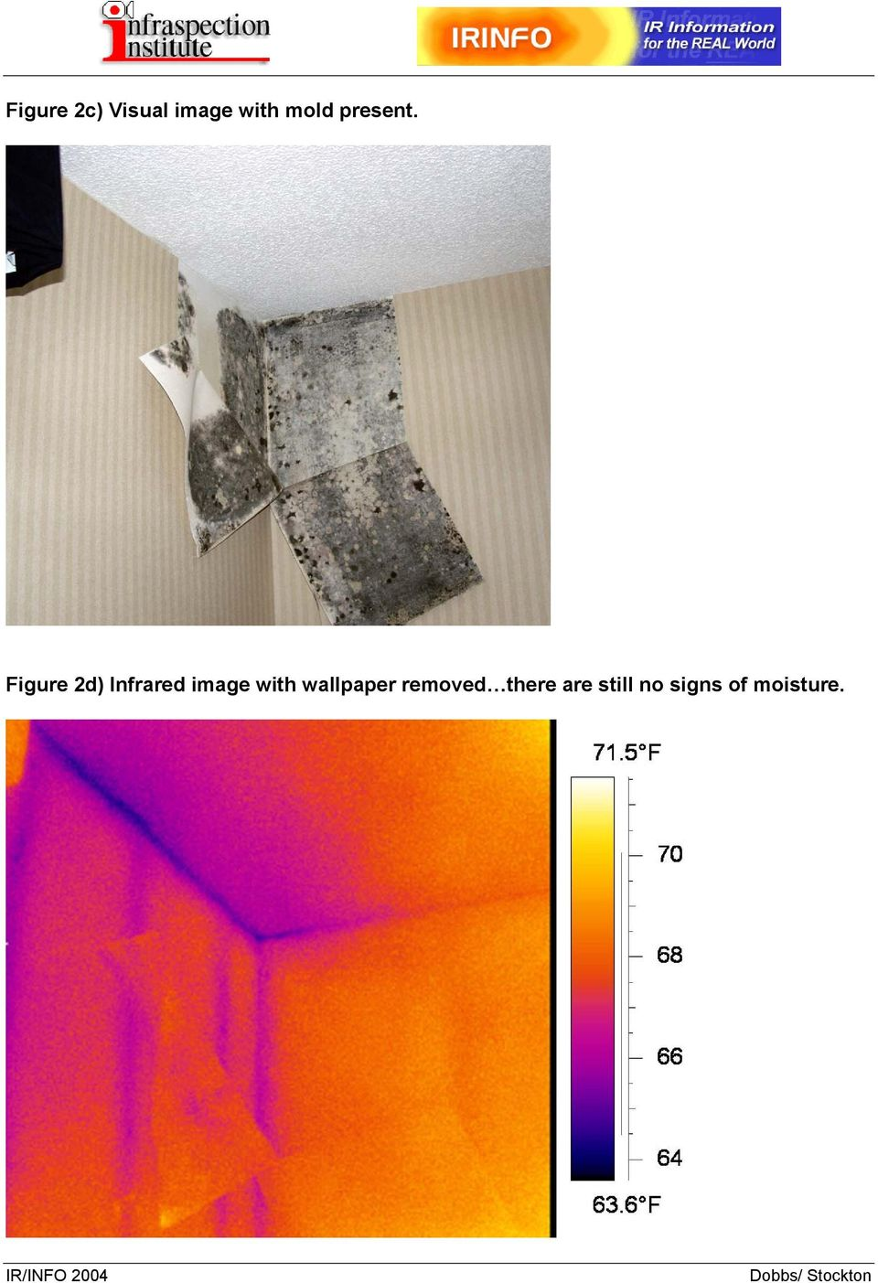 Figure 2d) Infrared image with