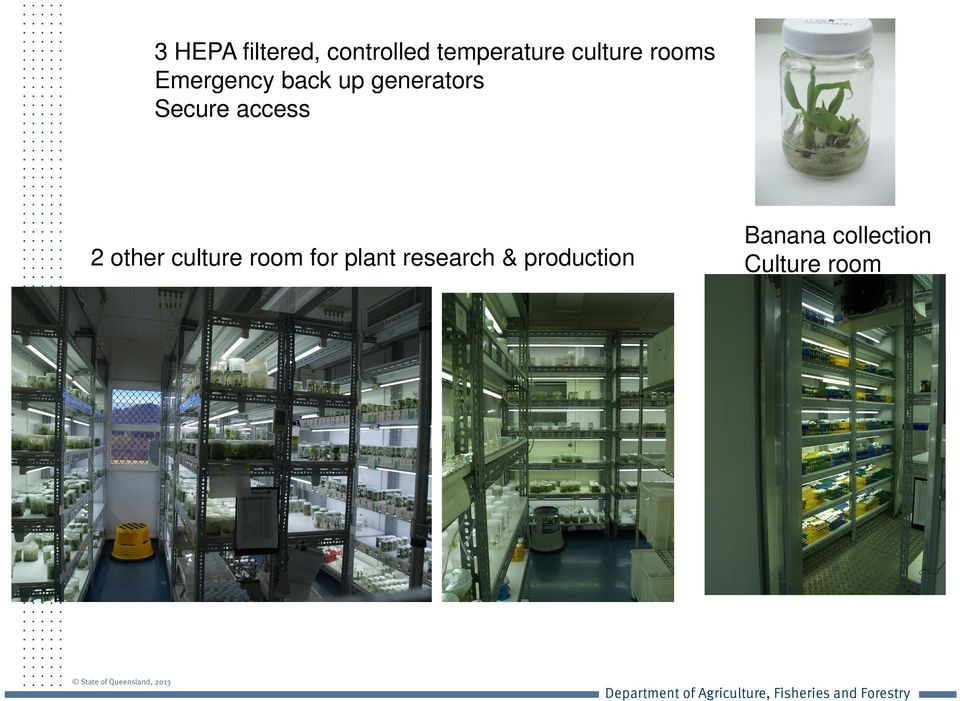 Secure access 2 other culture room for plant