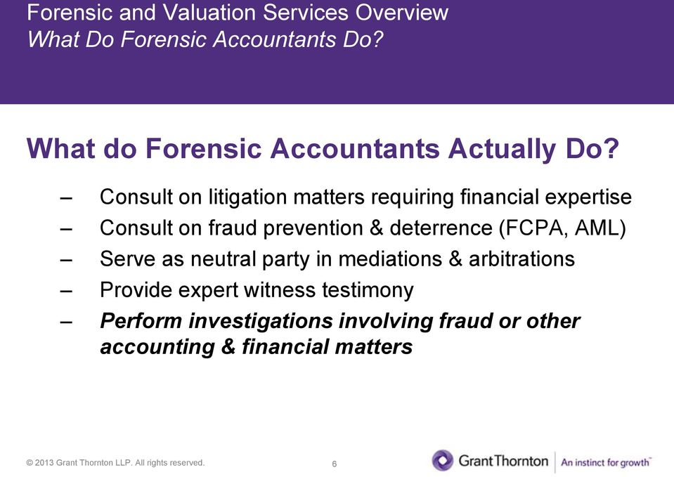 Consult on litigation matters requiring financial expertise Consult on fraud prevention &