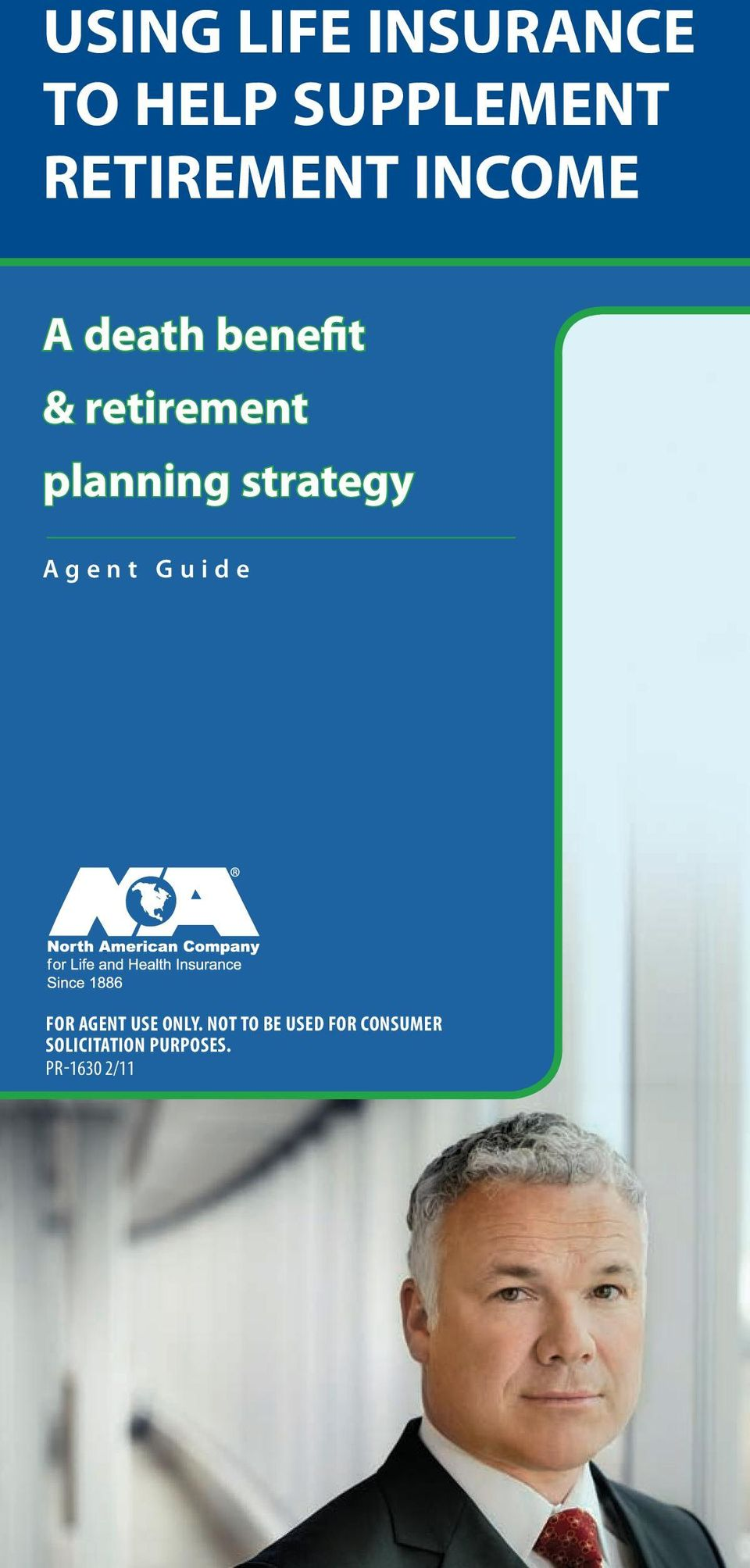 planning strategy Agent Guide For agent use