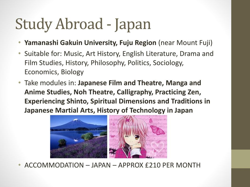 in: Japanese Film and Theatre, Manga and Anime Studies, Noh Theatre, Calligraphy, Practicing Zen, Experiencing Shinto,