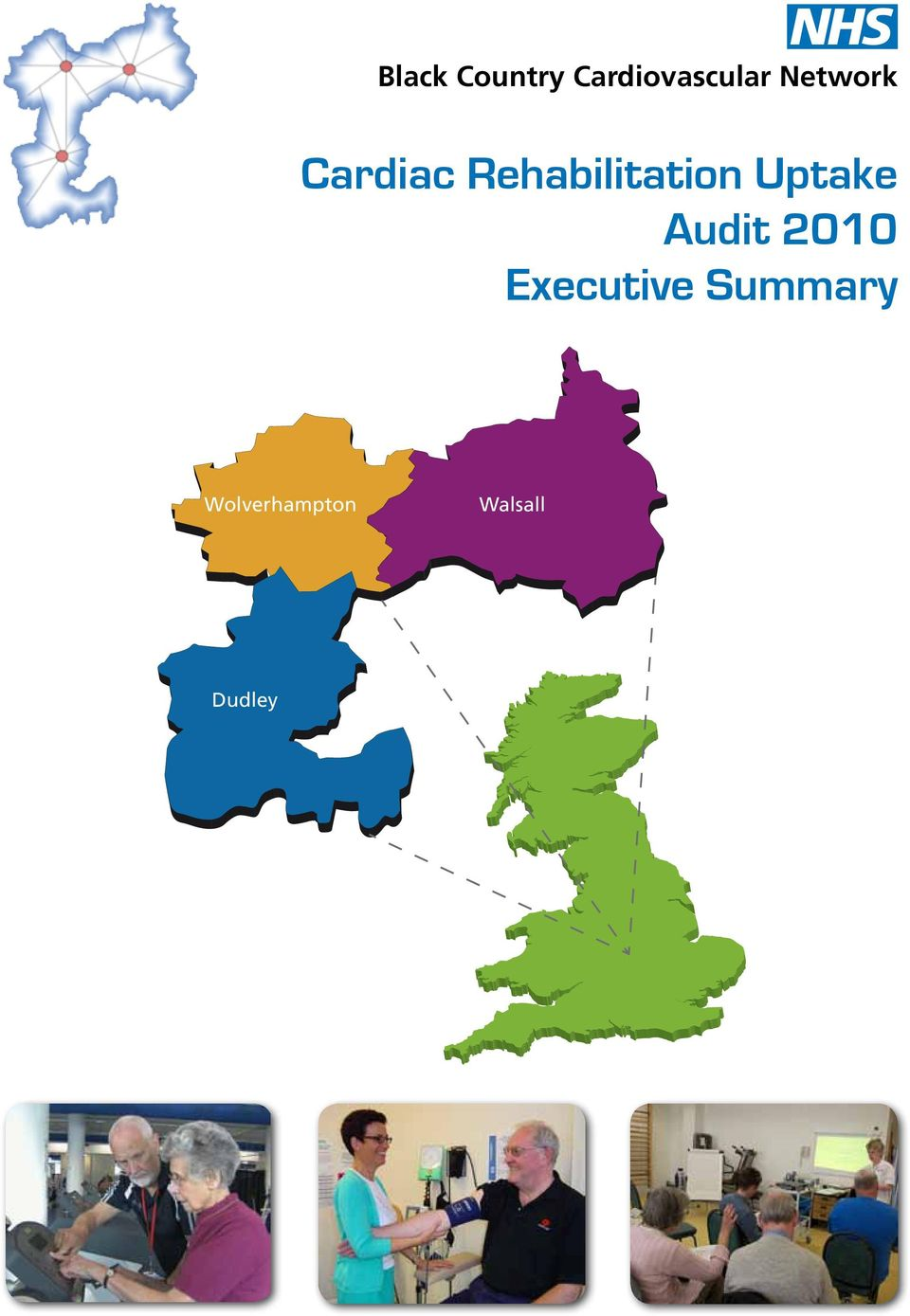 Uptake Audit 2010 Executive