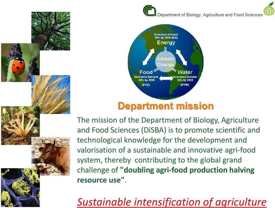 development and valorisation of a sustainable and innovative agri-food system, thereby contributing to the