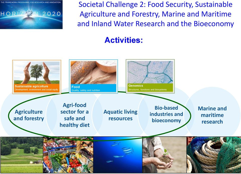 Quality, safety and nutrition Genomics Structures, functions and biosystems Agriculture and forestry Agri-food