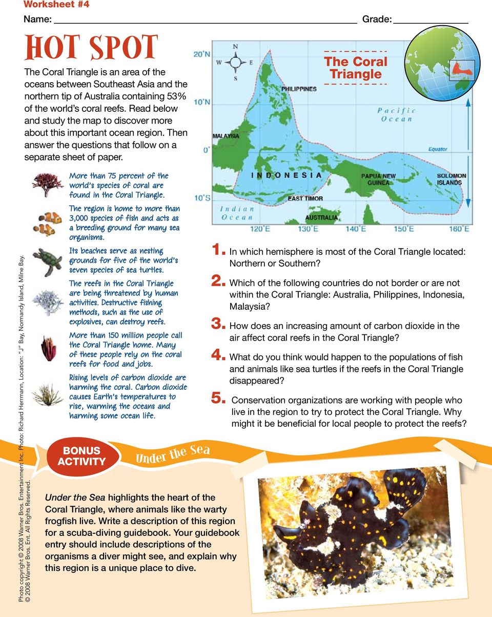 The Coral Triangle More than 75 percent of the world s species of coral are found in the Coral Triangle.