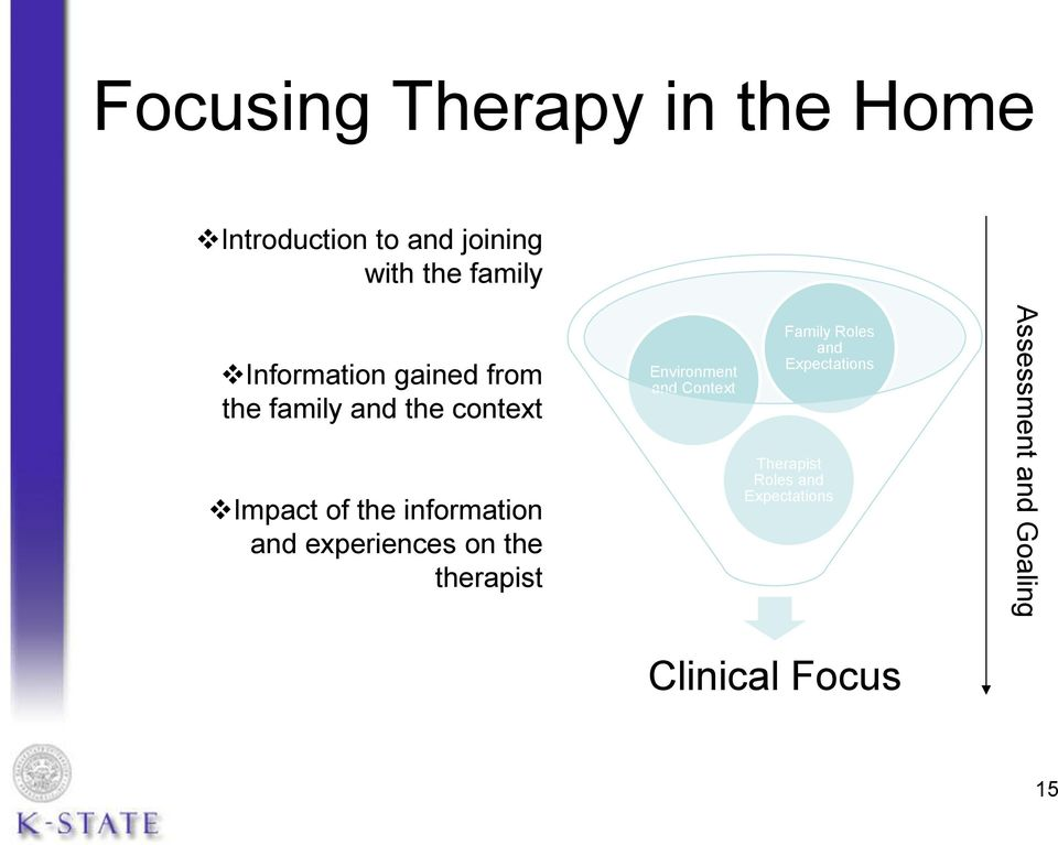 and experiences on the therapist Environment and Context Family Roles and