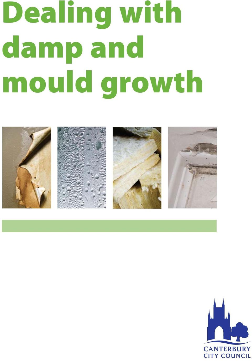 and mould